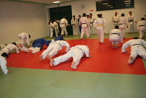 allenamento judo friuli venezia giulia