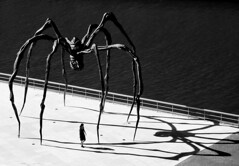 Shadow of a Doubt (Topyti) Tags: sculpture art spider olympus bilbao guggenheim maman 2008 louisebourgeois spagna ragno museoguggenheimbilbao 10faves jpeggy