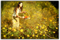 If I Had My Life to Live Over (AnnuskA  - AnnA Theodora) Tags: flower field yellow lady bravo poem basket sweet poetic cosmos 3000v120f youareanartist girlpickingflowers shadedframe