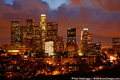los angeles (ruben_locopoco) Tags: california county ca city sunset urban usa west color colour building tower industry colors skyline architecture night skyscraper buildings dark evening la town us office losangeles colorful downtown commerce cityscape colours skyscrapers bright unitedstatesofamerica towers cities cityscapes structures skylines vivid sunsets calif architectural business nighttime highrise western northamerica nights metropolis southerncalifornia towns developed development americas metropolitan built offices bold evenings californian businesses cityofangels municipality constructed northamerican municipalities darnkness westernstates ronniebrugge