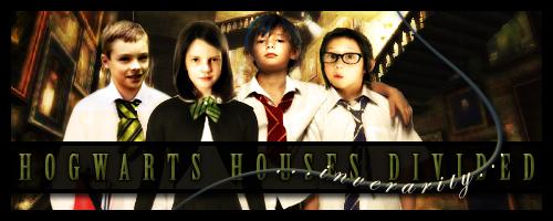 Hogwarts Houses Divided