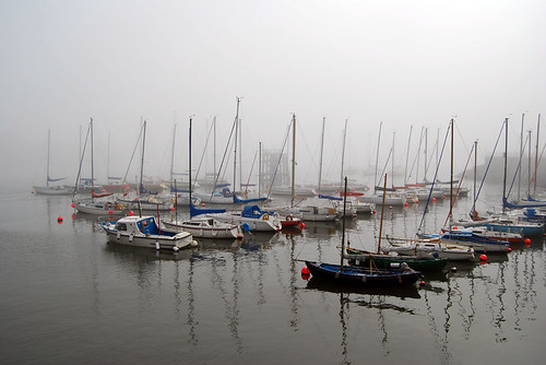 Moored In Misty Harbour
