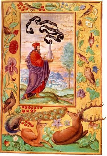 02-Busqueda de la naturaleza de los cuatro elementos
