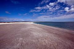 Shell Beach, Australia (C) 2008