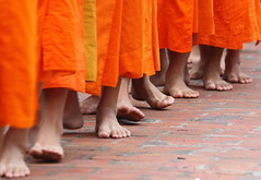 monk novices (detengase) Tags: orange colour feet colors canon foot eos asia asien southeastasia toes toe legs prayer religion leg culture monk buddhism unesco monks barefoot tradition laos luangprabang offerings alms moine louangphrabang novices northernlaos theravadabuddhism envyofflickr