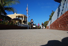 DSC_0531 (High Octane In My Veins) Tags: southbay pubcrawl bikeclub boozecruise cobras beachcruiser