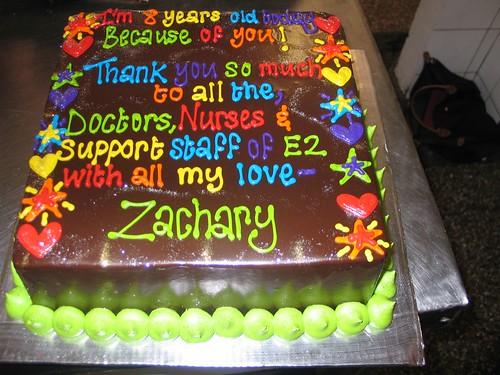 Marvelous Zacharys 8Th Birthday Cake A Photo On Flickriver Funny Birthday Cards Online Benoljebrpdamsfinfo