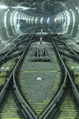 Rail (mrhayata) Tags: station japan underground subway geotagged tokyo blog metro shibuya rail tunnel junction line 日本 東京 トンネル 渋谷駅 東京都 渋谷区 東京メトロ 線路 mrhayata ジャンクション fukutoshin geo:lon=139702266 副都心線 geo:lat=35661062