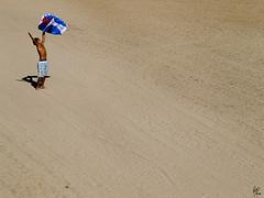 Arriba! (Paco CT) Tags: barcelona boy people kite beach happy libertad freedom kid sand gente free happiness playa personas arena explore alegria persons alegre 2008 nio libre marbella cometa ltytr1 humanpresence pacoct presenciahumana