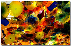 U.S.A - Las Vegas (jmboyer) Tags: voyage travel usa chihuly america canon hotel flickr lasvegas photos couleurs palace casino viajes planet lonely bellagio monde gettyimages travelphotography googleimage go amerique canonfrance jmboyer