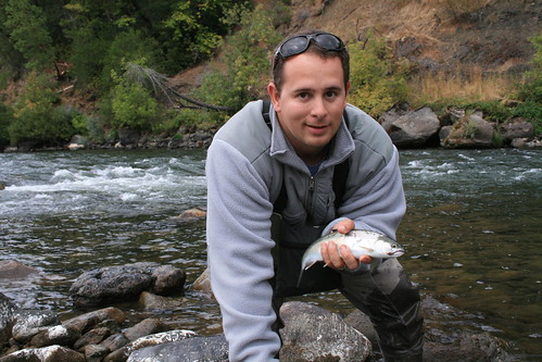 Oregon Rogue River half-pounder steelhead