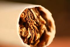 Tabaco (FernandoRey) Tags: macro argentina buenos aires tabaco kool cigarrillo mentolado