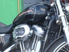 The Harley Pack (sjrowe53) Tags: california ireland usa bikes harleydavidson wexford motorbikes hellsangels seanrowe classicbikes