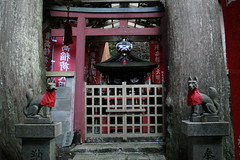 L'entrada vigilada