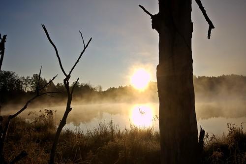 Calico Pond (by john_brainard)