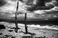 Relics (Effe.Effe) Tags: sea blackandwhite bw beach blackwhite mare bn spiaggia bianconero senigallia biancoenero