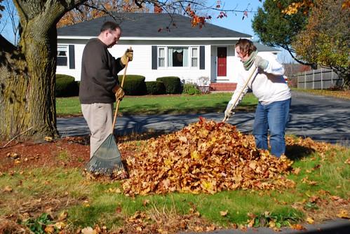 365.35: raking leaves (by aswim in knits)