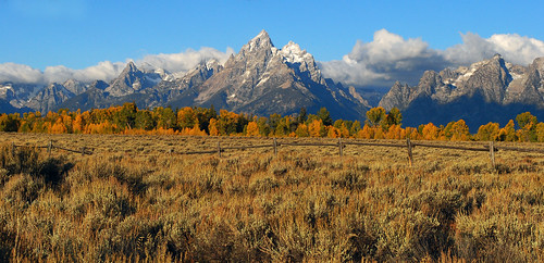Autumn Grand Tetons - 1051b