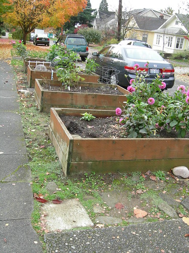 Parking strip planter boxes