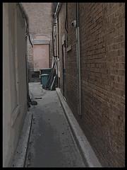 Back Alley (LB2556) Tags: urban abandoned trash dark newjersey alley bricks dirty princeton walls garbagecans desolate narrow deserted rustyandcrusty anawesomeshot grouptripod lb2556