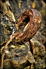 Rusty old mooring ring, Black Rock (-terry-) Tags: 15challengeswinner