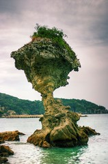 Dark mushroom, Japan (The Other Martin Tenbones) Tags: autumn sea green mushroom water japan stone clouds 50mm erosion nagasaki 400d