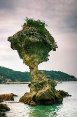 Dark mushroom, Japan (The Other Martin Tenbones) Tags: autumn sea green mushroom water japan stone clouds 50mm erosion nagasaki 400d