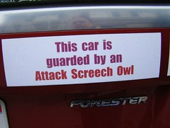 This car guarded by attack screech owl