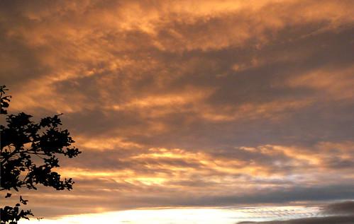 Sunset sky 11Dec08