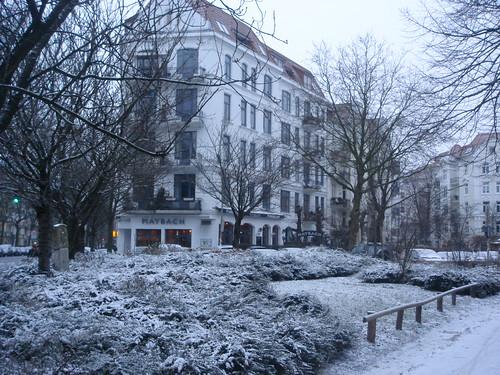 白忙忙一片的雪景