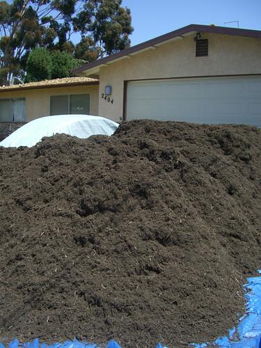 Mulch pile OMG