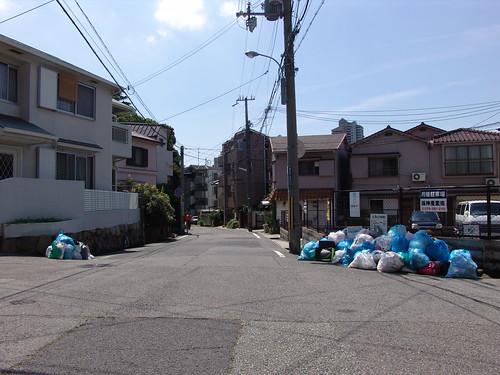 streetview on garbage day