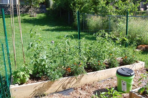 Garden 070508-02