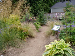 Mixed Beds with Interpretation