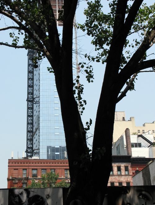 Trump SoHo as seen through a tree, Manhattan, NYC