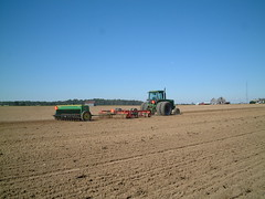 20011007_110641 (travel1jc) Tags: wheat agriculture sowing talbotcountymaryland