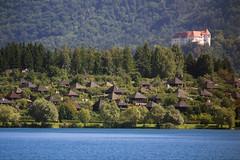 Domination (peshovski) Tags: lake castle water kodak domination slovenia slovenija whateva kuntakinte dominanta velenje kodakz712is z712is peshovski velenjelake velenjecastle velenjskigrad kintakunte