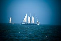 Sailing Home.... (zilverbat.) Tags: travel sea sky wow sailing ship awesome free mast 2008 ijsselmeer volendam roer kaptain vignet canon40d zilverbat