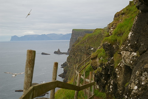 Mykines - path to bird cliffs