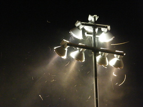 Stadium Lights & Bugs by Travelin