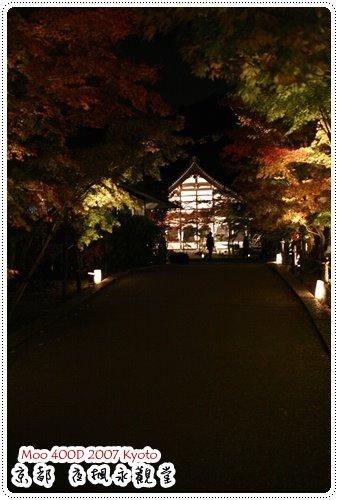 夜楓永觀堂-17