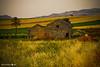Rural house (Michele Naro) Tags: italien italy italia campagna sicily fujifilm landschaft sicilia casolare trapani rudere sizilien rurale fujifilms9600