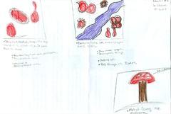 Khalil.jpg (mmans4863) Tags: bacteria viruses protists
