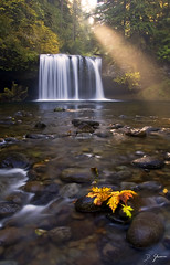 My Favorite Time of the Year (Dan Sherman) Tags: autumn fall waterfall waterfalls buttecreek oregonwaterfalls crookedfinger scottsmills buttecreekfalls oregonwaterfall northwestwaterfall upperbuttecreekfalls pacificnorthwestwaterfalls pacificnorthwestwaterfall crookedfingerrd scottsmillsoregon