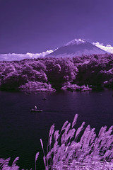 Shoji Lake and Mt. Fuji with Fisherman in Infrared (aeschylus18917) Tags: red sky mountain lake tree nature japan landscape ir boats boat fishing fisherman nikon scenery d70 nikond70 surreal mountfuji infrared  fujisan infra  1870mm shoji yamanashi   shojiko  1870f3545g yamanashiken shjiko yamanashiprefecture shojilake lakeshoji  nikkor1870f3545g danielruyle aeschylus18917 danruyle druyle   nikkor1870f3545gdx