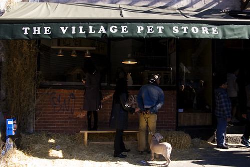 The Village Pet Store