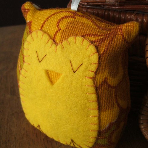sleepy owl in mellow yellow