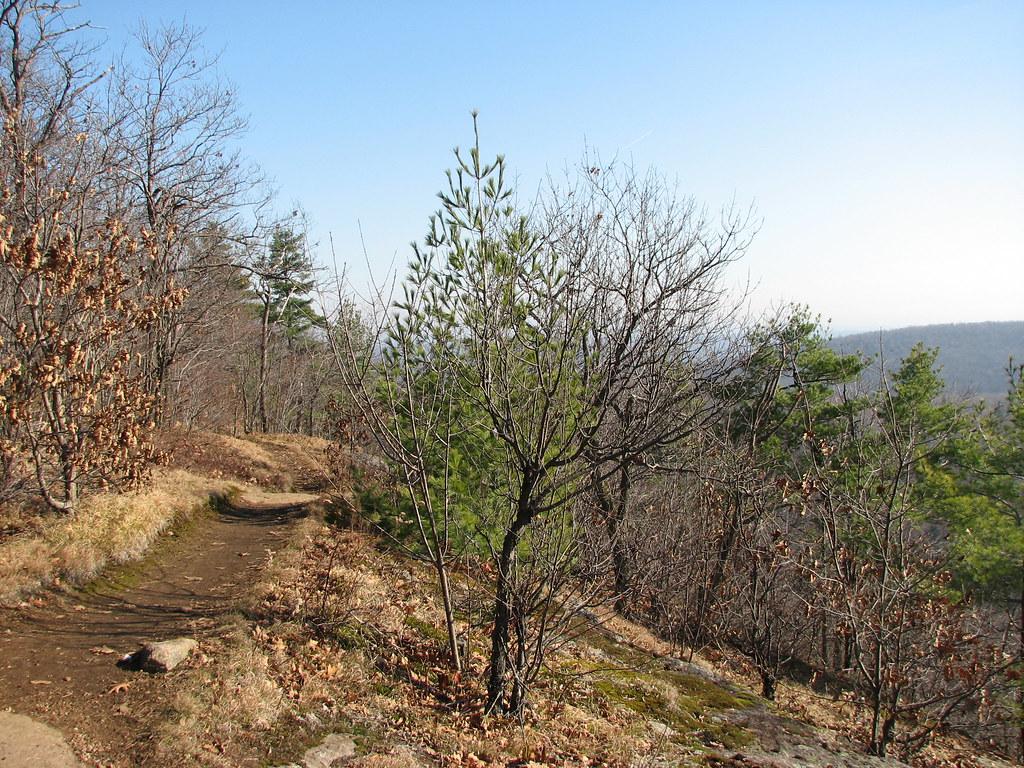 Wolf Trail, Gatineau