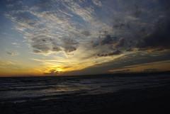Sunset (24cut) Tags: japan chiba makuhari