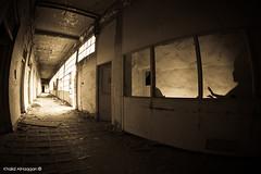 Just run (Khalid AlHaqqan) Tags: shadow abandoned ex window canon dc ghost alien sigma fisheye freak beast kuwait phantom khalid f28 10mm herror hsm 40d abigfave kuwson alhaqqan flickrdiamond canon40d theperfectphotographer sigma10mmf28exdchsmfisheye khalidalhaqqan